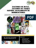 BIORREACTORES-DE-BUCLE-TANQUE-AGITADO.docx