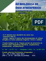 1aula fixaçao biologica de n.pdf
