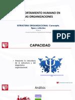 organizacional 3