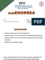 Amenorrea - Pedro