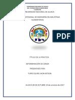 DETERMINACION_DE_HUMENDAD_Y_MATERIA_SECA_(1)[1].docx
