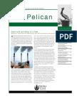 Fall 2007 Pelican Newsletter, Florida Sierra Club