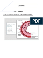 Patologia III 2017