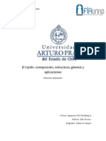 Caolinita Paper Vera_Campos