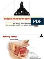 Surgical Anatomy of Salivary Glands