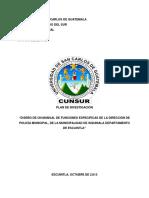 Plan de Investigacion Practica Profesional-1
