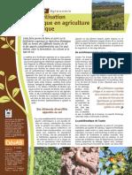 Agronomie Fiche6 La Fertilisation Organique MD