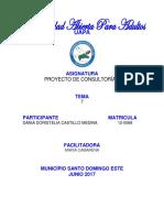 Tarea 7 Consultoria II (Dania Castillo)