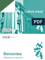 Cultura Visual - Clase 1 Cepreba PDF-1(1)