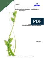 Informe Ambiental Vigencia 2012