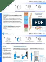 Efectos en La Salud Por Carga Fisica PDF