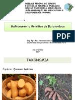 Melhoramento  genético de Batata Doce (Vanderson dos Santos Pinto)