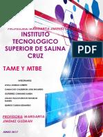 Trabajo Mtbe y Tame.pdf