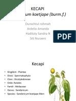 KECAPI [Autosaved]