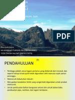 Presentasi_Tambang_Tembaga_dan_Emas_Gra.pptx