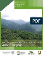 EPJ_APFF_Monte_Mojino_23junio2014.pdf