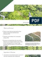 Ecotone_Ashley_Tuhina_Hyundai.pdf