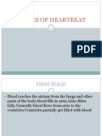 Stages of Heartbeat
