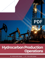 OG071 Hydrocarbon Production Operations