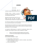 COROIDES resumen