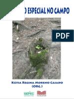 Educação Especial no Campo.pdf