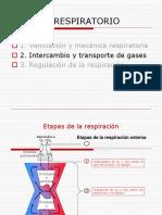 3 5 Estructura Hemoglobina