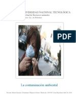 Informe Final sobre la Contaminacion ambiental.docx