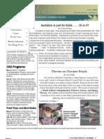 November 2008 Shorelines Newsletter Choctawhatchee Audubon Society