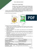 Tugas 1 Biologi Umum - Ariska Ulansari - 022343765