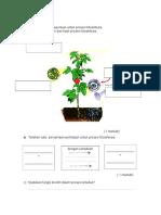 34-35 fotosintesis