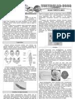 Biologia - Pré-Vestibular Impacto - Reino Protista - Algas Unicelulares