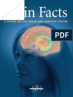 Brain Facts - A Primer on the Brain and Nervous System 6th Edition (Malestrom).pdf