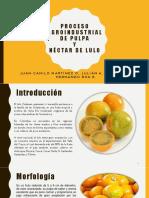Exposicion Frutas y Hortalizas