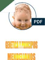 GENETICA UPAO