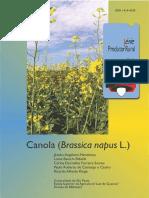 61 - Canola (Brassica Napus L.)