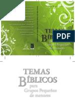 Libro-Temas Biblicos Para Grupos Pequeños de Menores