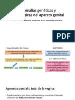 Anomalías Genéticas y Morfológicas Del Aparato Genital