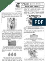 Biologia - Pré-Vestibular Impacto - Sistema Reprodutor - Feminino II