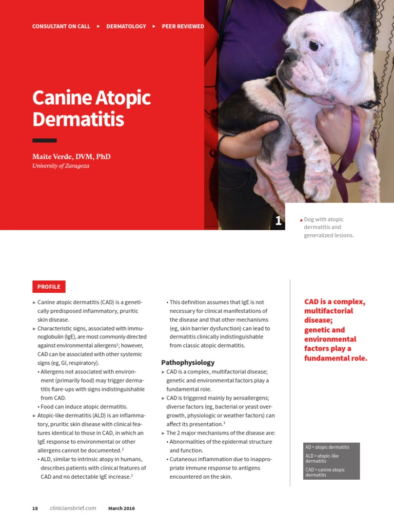 COC_ Canine Atopic Dermatitis | Allergy | Allergen
