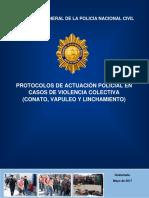 Procesos policiales en Violencia Colectiva