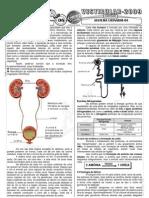 Biologia - Pré-Vestibular Impacto - Sistema Urinário