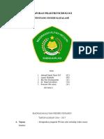 LAPORAN BIOLOGI ENZIM KATALASE.doc