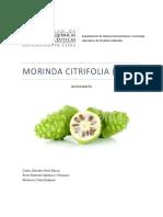Monografía Morinda citrifolia