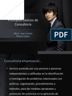 Principios Básicos de Consultoría