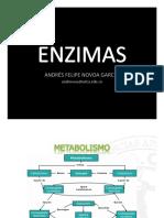 Presentación Enzimas(1)