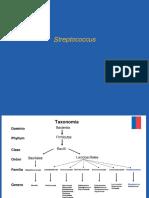5-Streptococcus. (1) (1)