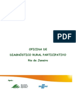 Manual_DRP.pdf