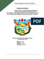 TDR EXP TECN RESIDUO SOLIDO.docx