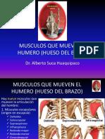 6 MUSCULOS QUE MUEVEN EL HUMERO (HUESO DEL.pptx