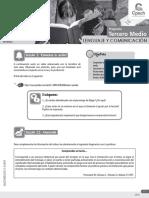 Guía Introducción a la comprensión de textos_PRO